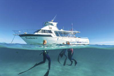 Coastal Cruises